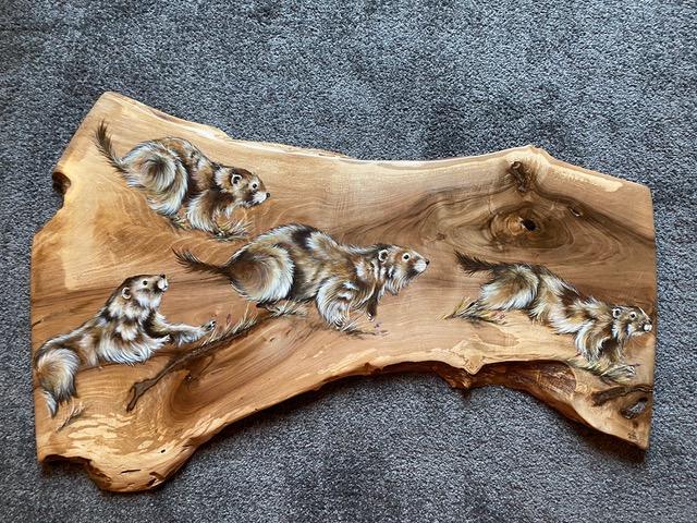Atelier du bois - Marmottes