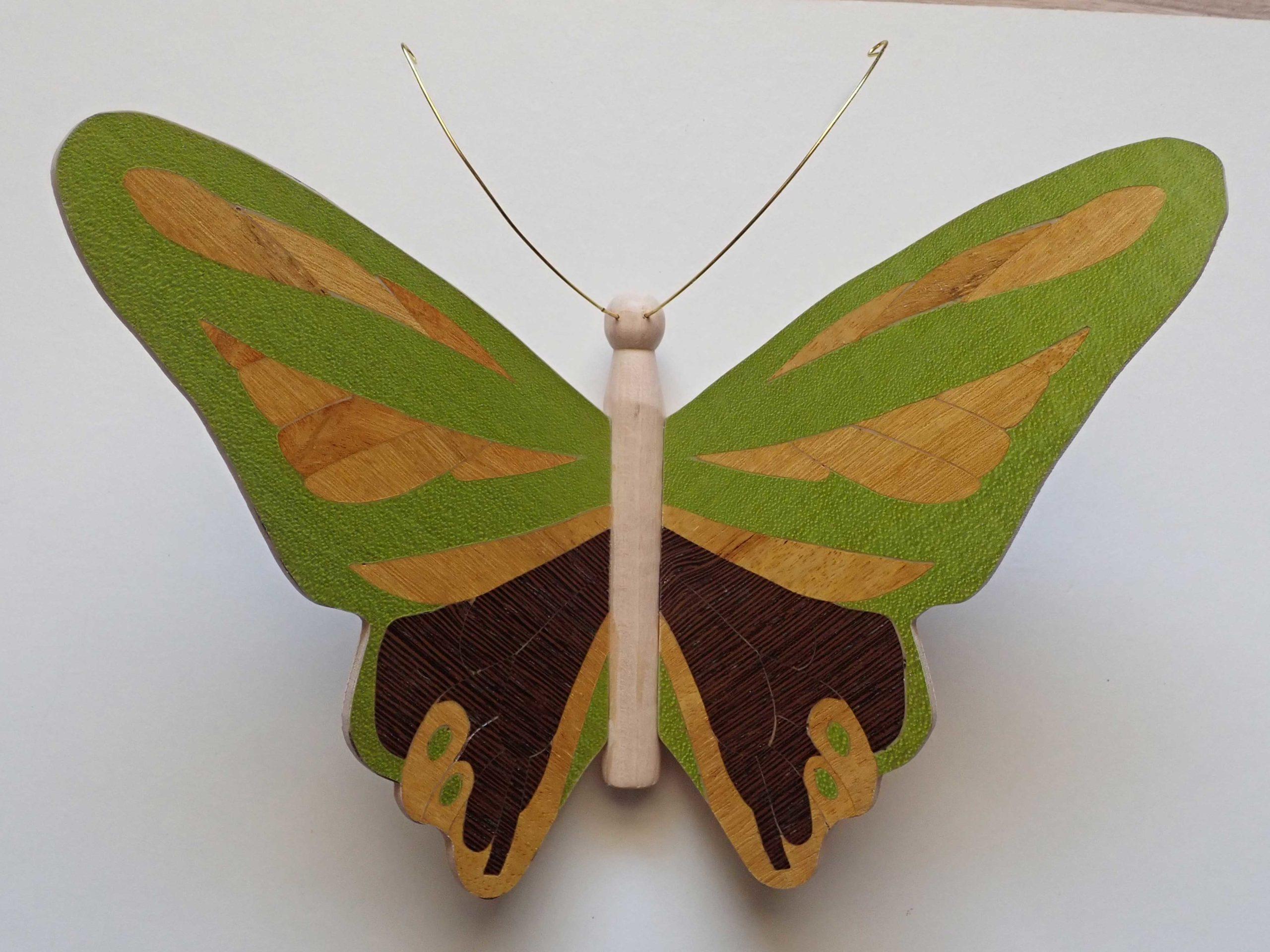 florence-papillon3