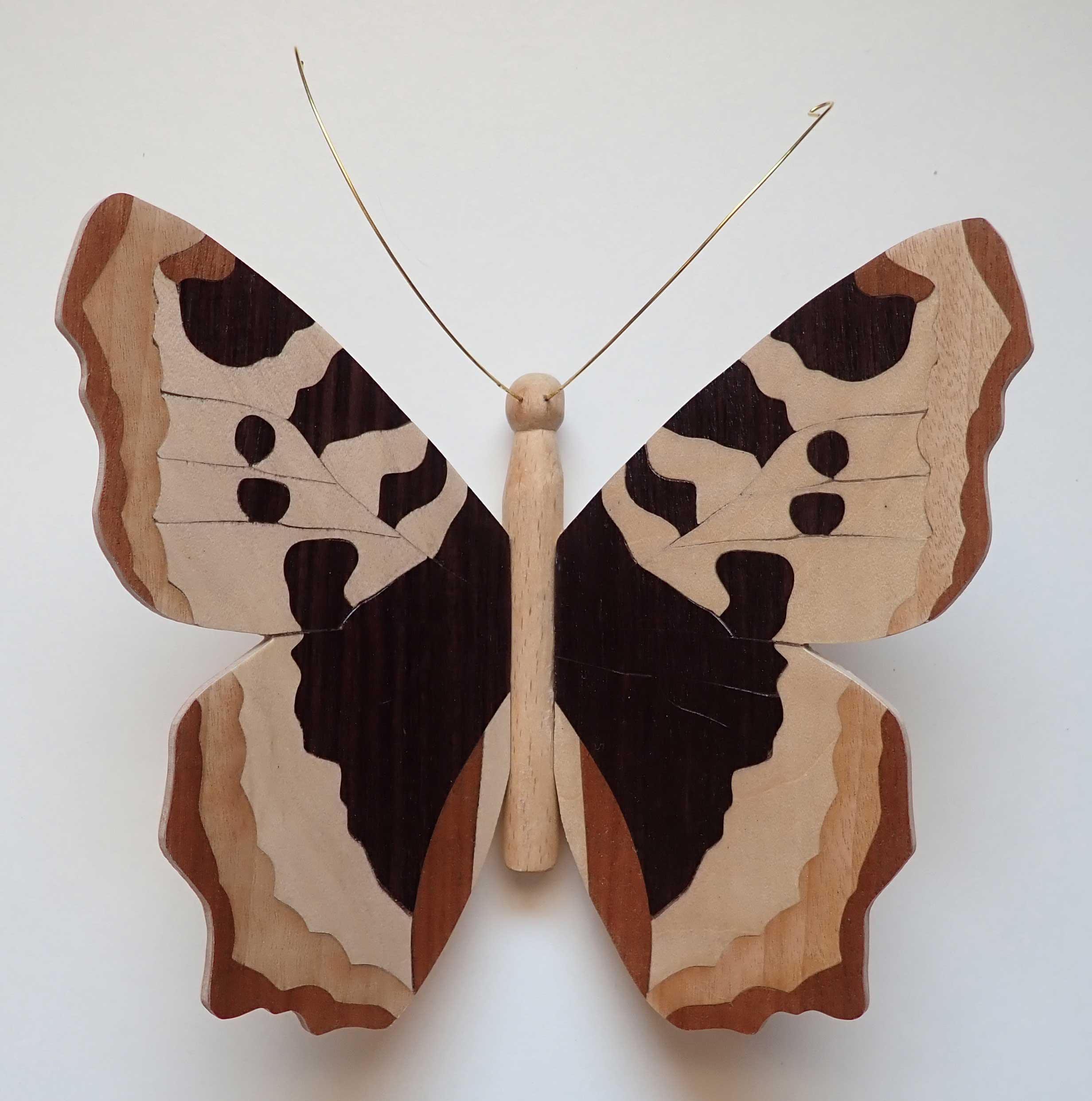 florence-papillon8